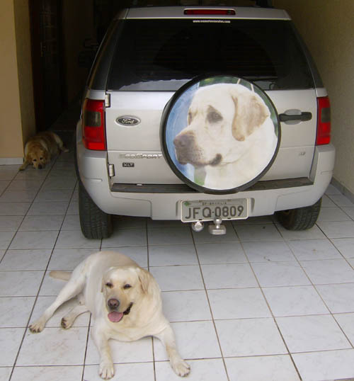 Claudia, Segue foto de como ficou a capa do carro, veja se reconhece o Cão, todos juram que ele é o Eros.  Prop: Araujo